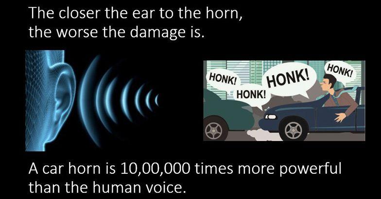 horn-7.jpg.image.784.410